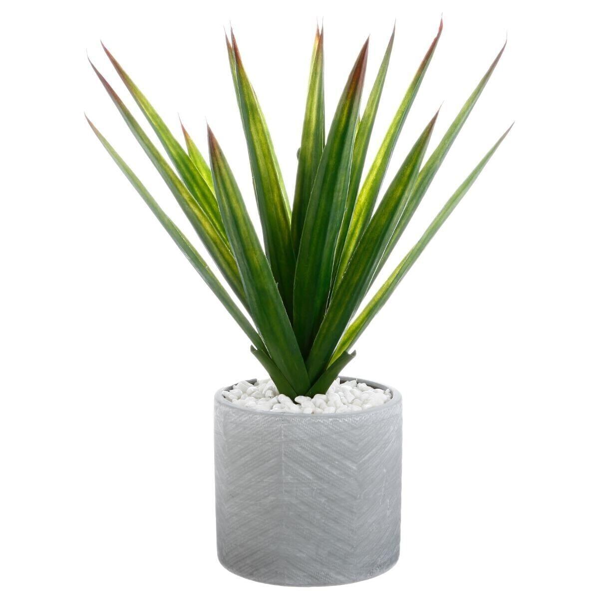 Atmosphera meuble linge de maison d coration for Plants fleurs pas cher